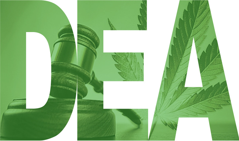 States Need To Take Action Now To Protect MMJ Patients