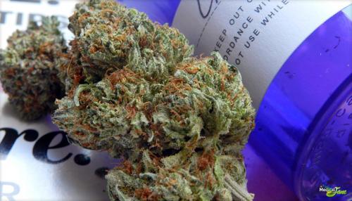 LA Confidential Marijuana Strain (Review)