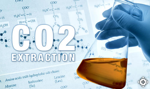 Supercritical CO2 Cannabis Extraction Is Safe