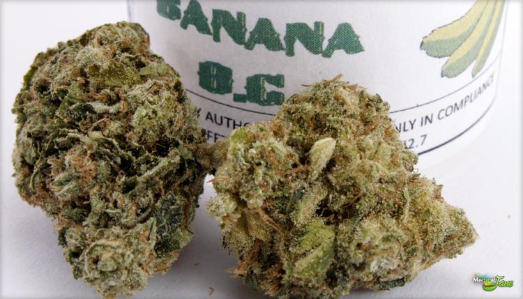 Banana OG Marijuana Strain (Review)