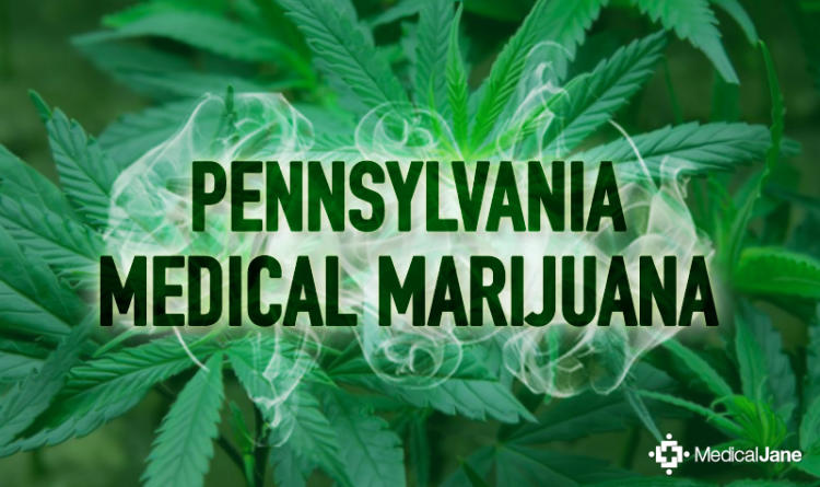medical marijuana industry